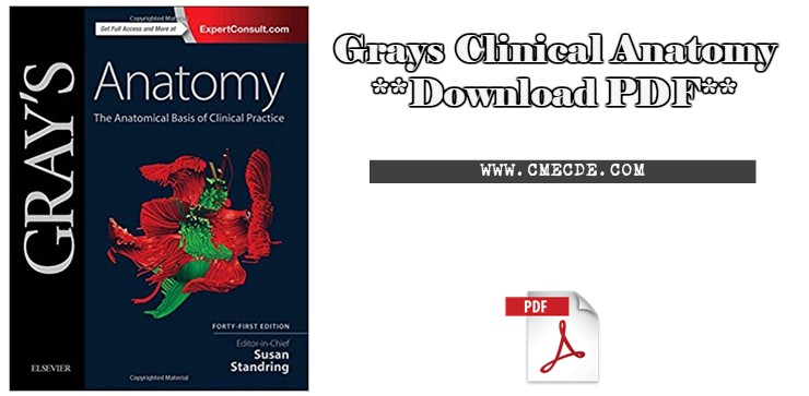 Download Grays Clinical Anatomy Pdf Cme Cde