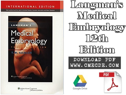 Download the developing human clinically oriented embryology 8th download langmans medical embryology 12th edition pdf free fandeluxe Gallery