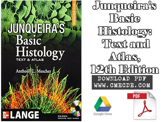 Download junqueiras basic histology text and atlas 12th edition junqueiras basic histology text and atlas 12th edition fandeluxe Gallery