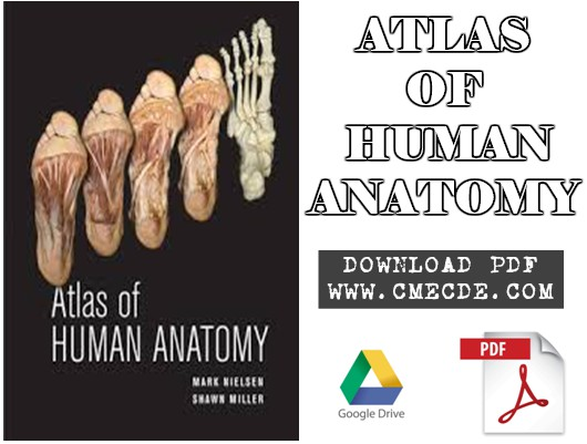 Download Atlas Of Human Anatomy Pdf Free Cme Cde
