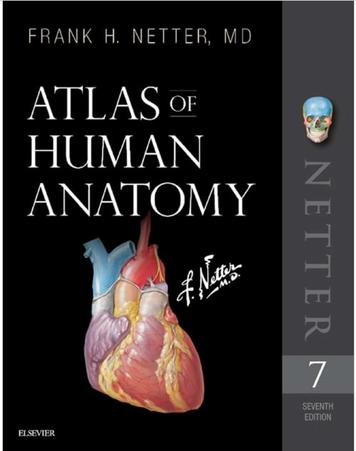 Download Netters Atlas Of Human Anatomy 7th Edition Pdf Free Cme