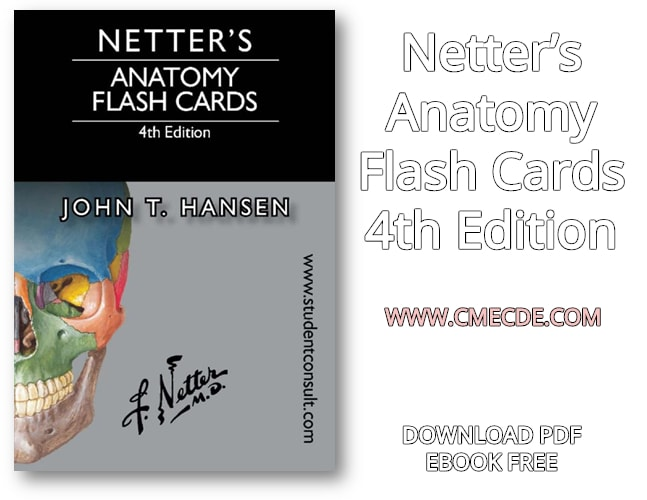 Download Netters Anatomy Flash Cards 4th Edition PDF Free